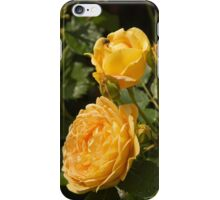 Lovely yellow roses iPhone Case/Skin