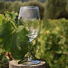 Wine glass on a log by Sue Leonard