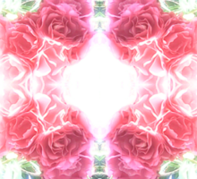 Bed of Pink Red Roses Sticker