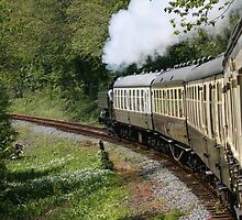 Steam Train in full steam by Sue Leonard