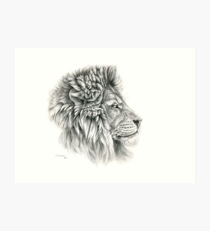 King - Lions profile g044 by schukina Art Print
