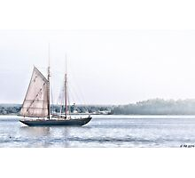 Schooner VIRGINIA Photographic Print