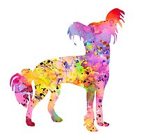 Chinese Crested by Watercolorsart
