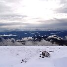 View From Peak Of a Mountain Lisin by Nedim Bosnic