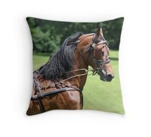 Horse in harness Throw Pillow