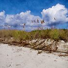 Southern Sands by perkinsdesigns