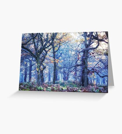 The Enchanted Forest ~ Landscape Greeting Card