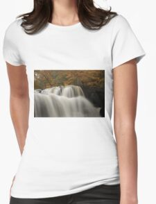 Brush Creek Falls Womens Fitted T-Shirt