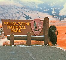 WELCOME TO YELLOWSTONE by Chuck Wickham