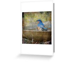 Bluebird Rustic Home Decor Greeting Card