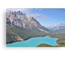 Peyto Lake - Alberta, Canada Canvas Print