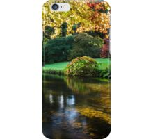 Along the River Vartry iPhone Case/Skin