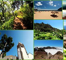 Collage from Portugal (Madeira) 3 - Travel Photography by JuliaRokicka