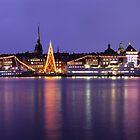 Christmas Tree - Stockholm, Sweden by Kasia Nowak