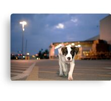 Puppy Power Canvas Print