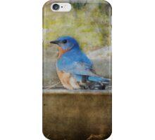 Bluebird Rustic Home Decor iPhone Case/Skin