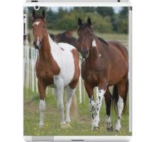 Coloured Horses iPad Case/Skin