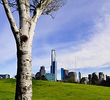 melbourne, victoria, australia by gary roberts