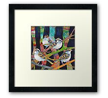 White-throated sparrows Framed Print