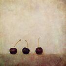 Cherries by Priska Wettstein