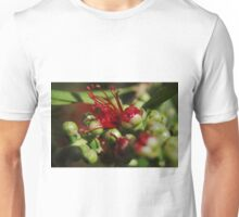 Callistemon flower Unisex T-Shirt