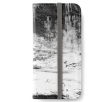 Icy Falls iPhone Wallet/Case/Skin