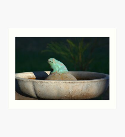 FROG IN A POND Art Print