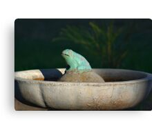 FROG IN A POND Canvas Print
