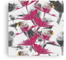 Pink thistle and yellow bumblebee Canvas Print