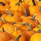 it is all pumpkins by ANNABEL   S. ALENTON