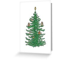 Christmas Fir Tree with Owls Greeting Card
