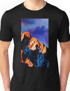 big hill 2014 Unisex T-Shirt