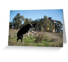Full Flight ...To Her Ball. Greeting Card