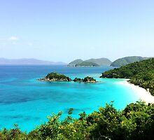 Trunk Bay, St John, Virgin Island by kjrvmsi