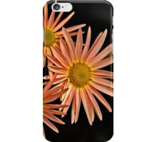 Orange Chrysanthemum iPhone Case/Skin