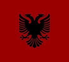 Albanian Eagle / Flag by TimeMeddler