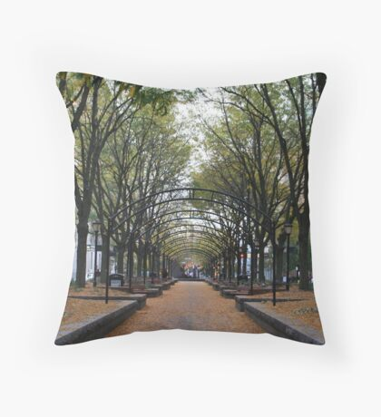 Urban Park | Autumn in the City | Piatt Park, Cincinnati Throw Pillow