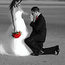 *She Found her Prince* by DeeZ (D L Honeycutt)