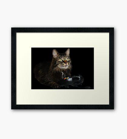 gamer cat Framed Print