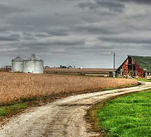 Country Roads by jewelskings