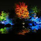 In a Japanese Garden by Sandra Fortier