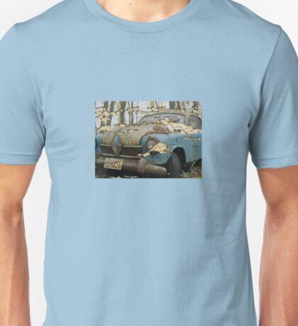 Decayed yet Beautiful Unisex T-Shirt