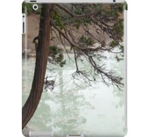 Tree Reflected on Boiling Springs Lake iPad Case/Skin