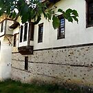 Old style house in the Rhodopes by Maria1606
