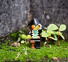 ::: { THE PIRATE CAPTAIN } ::: by Lucia Fischer
