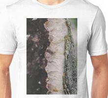 Rock slice. Unisex T-Shirt