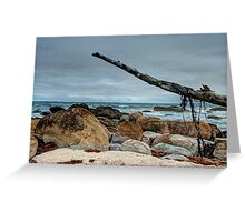 Cape Conran 2 Greeting Card
