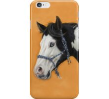 American Paint Horse P054 by schukina iPhone Case/Skin