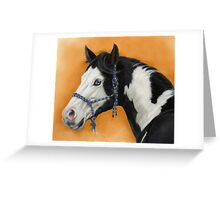 American Paint Horse P054 by schukina Greeting Card