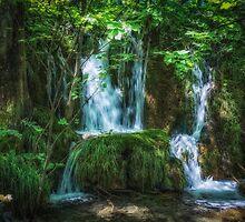 Plitvice Lakes National Park by Dobromir Dobrinov